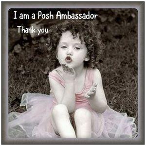 Accessories - I AM A POSH AMBASSADOR